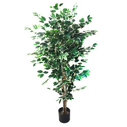 5 foot Ficus Artificial Tree Image
