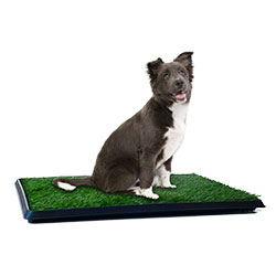 PETMAKER Puppy Potty Trainer - The Indoor Restroom for Pets 20 x 25