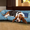 PETMAKER X-Large Plush Cozy Dog Pet Bed - Blue