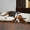 PETMAKER Small Cushion Pillow Pet Bed - Latte
