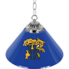 University of Kentucky Wildcats Single Shade Bar Lamp - 14 inch