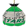 NHL 16 Inch Handmade Stained Glass Lamp - Dallas Stars�