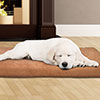PETMAKER 3 inch Foam Pet Bed-25.5x19 inches-Clay