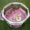 Portable Pop Up Pet Play Pen with carrying bag 38in diameter 24in Pink by PETMAKER