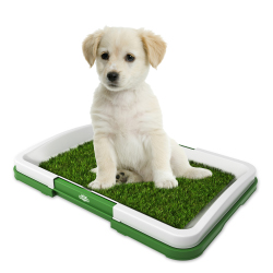 Artificial Grass Bathroom Mat for Puppies and Small Pets- Portable Potty Trainer for Indoor and Outdoor Use by PETMAKER- Puppy Essentials, 18.5? x 13?