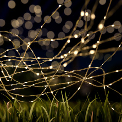 Outdoor Starry Solar String Lights- Solar Powered Warm White Fairy 100 LED Lights with 8 Lighting Modes for Patio, Backyard, EventsPure Garden Image