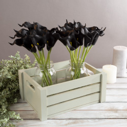 Artificial Calla-Lily with Stems - Real Touch Fake Flowers for Home Decor, Wedding, Bridal/Baby Shower, More- 24 Pc SetPure Garden (Black) Image