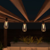 Outdoor Solar String Lights- Solar Powered Traditional Hanging Lighting with Vintage-Style Bulbs for Patio, Backyard, Garden, Events by Pure Garden