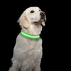 LED Large Dog Collar-Lights Up for Night Visibility and Safety- Adjustable, Rechargeable, 3 Flash Modes-For Evening Walks or Runs by Petmaker (Green)