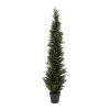 6-Foot-Tall Artificial Cedar Topiary Trees- Potted Indoor or Outdoor UV Protection Plastic Tree in Pot for Home or Office by Pure Garden