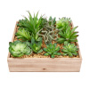 Faux Succulents ? Assorted Lifelike Plastic Greenery Arrangement with 10 Inch Decorative Wooden Box for Indoor Home or Office by Pure Garden (4 Piece)