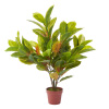 Faux Croton Plant ? Realistic Croton Natural and Lifelike Imitation Greenery with Weighted Pot for Indoor Home or Office D�cor by Pure Garden (36?)