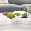 Faux Succulents ? Assorted Lifelike Plastic Greenery Arrangements Decorative Ceramic Pots for Indoor Home or Office D�cor by Pure Garden (Set of 4)
