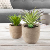 Faux Aloe Plant Arrangements- Set of 2- Lifelike Plastic Succulent Greenery in Stone Look Pots for Indoor Home or Office D�cor by Pure Garden