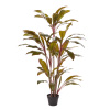 59-Inch Artificial Cordyline ? Tall Natural-Look Faux Indoor Floor Plant for Home, Restaurant or Office D�cor ? Large and Lifelike by Pure Garden