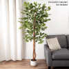 Artificial Ficus Tree- 80-Inch Potted Silk Tree for Home or Office Decoration- Indoor Faux Plant with Natural Looking Greenery by Pure Garden