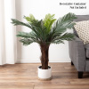 Artificial Cycas Palm Tree- 3-Foot Potted Faux Plant for Home or Office Decoration- Ornamental Greenery for Indoor or Outdoor Use by Pure Garden