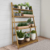 Ladder Plant Stand-4 Tier Freestanding Bamboo Storage Shelf-Foldable Indoor/Outdoor Rack for Flowerpots, Planters, Shoe Rack or Display by Pure Garden