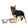 Stainless Steel Raised Food and Water Bowls with Decorative 3.5? Tall Stand for Dogs and Cats-2 Bowls, 40oz Each-Elevated Feeding Station by Petmaker