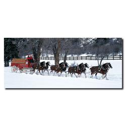 Clydesdales in Snow Covered Field w/ fence- 20x47 Canvas