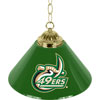 University of North Carolina Charlotte 14 Inch Single Shade Bar Lamp