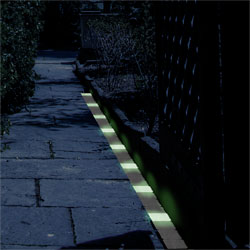 Glow in the Dark Path Markers Image