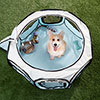 Portable Pop Up Pet Play Pen with carrying bag 33in diameter 15.5in Blue by PETMAKER