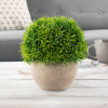 Artificial Benn Grass Plant- 7? Round Potted Ornamental Greenery for Indoor Use, Realistic PE Plastic, Home and Office Decoration by Pure Garden