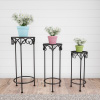 Plant Stands ? Set of 3 Indoor or Outdoor Nesting Wrought Iron Metal Round Decorative Potted Plant Accent Display Accessories by Pure Garden (Black)