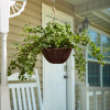 Faux English Ivy ? Hanging Natural and Lifelike Artificial Arrangement and Imitation Greenery with Basket for Home or Office D�cor by Pure Garden
